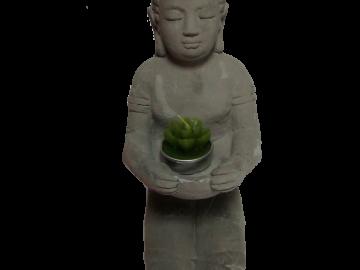Buda hincadoD044
